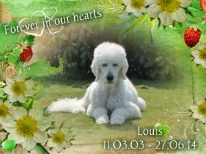 Louis Memorial (2)
