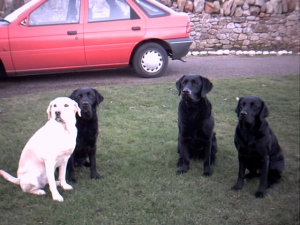 Nell, Maddie, Todd and Jean